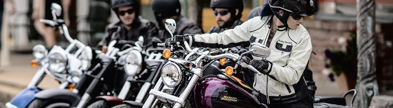 Group of Harley Motorcycles
