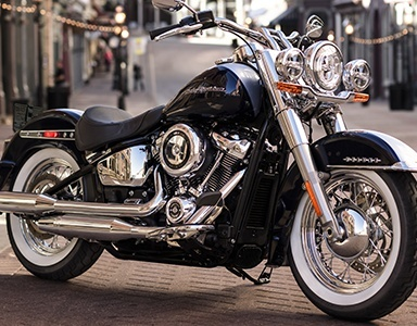 black and grey Harley-Davidson® parked on street